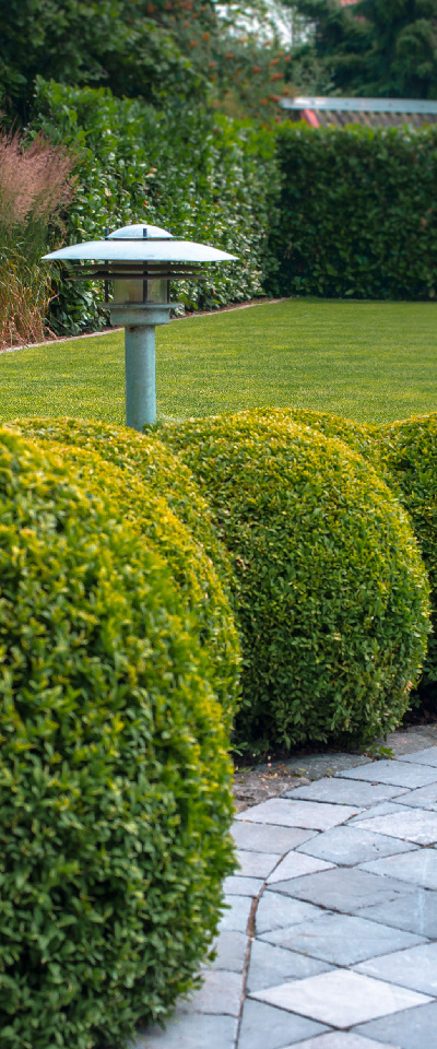 pastorietuin, buxus, bolvormig, tuinverlichting, terras