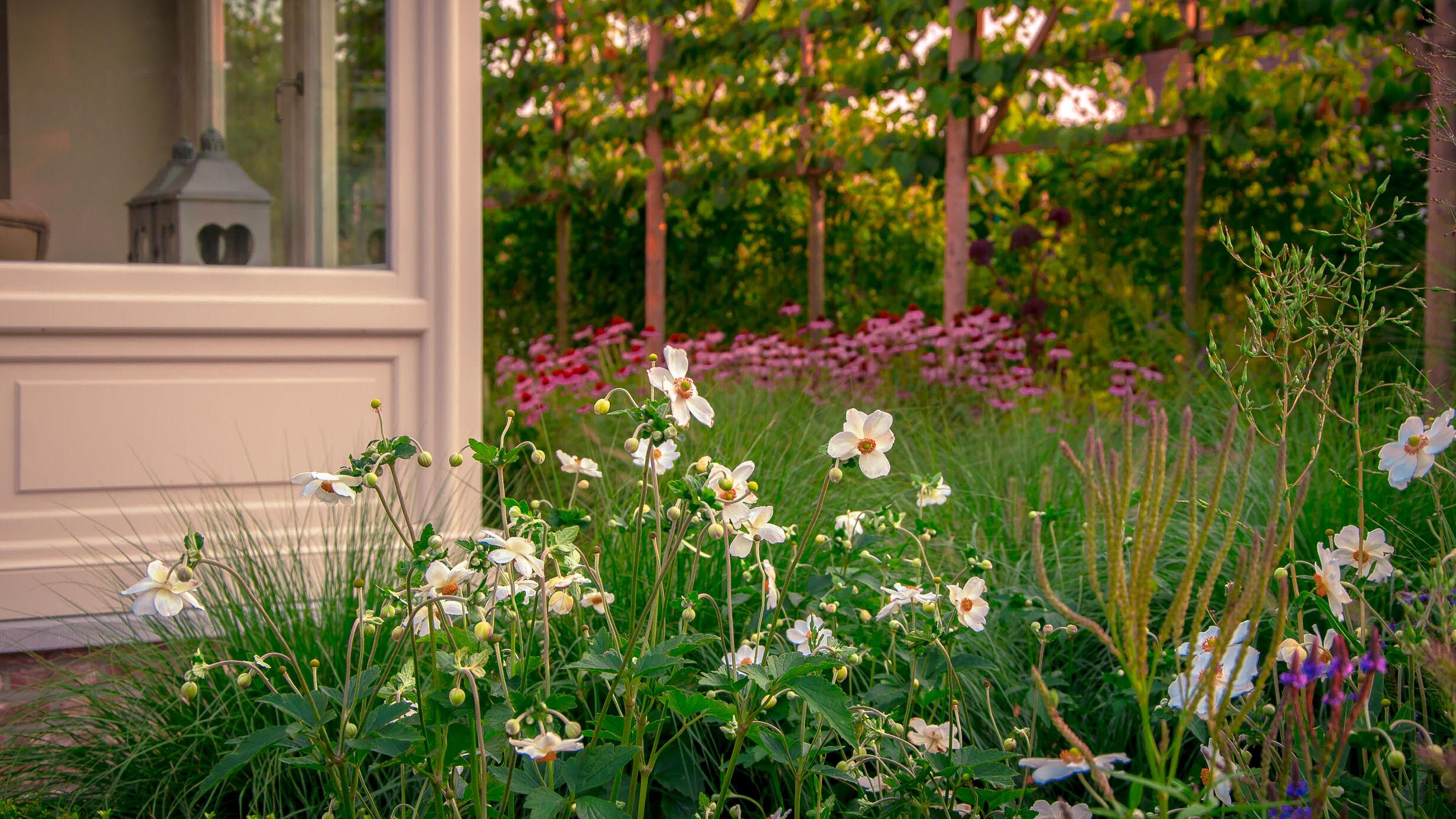tuinontwerp, tuinaanleg, bloemen, tuinarchitect, tuinaannemer